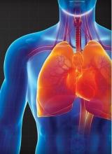 Регистрация давления в дыхательных путях